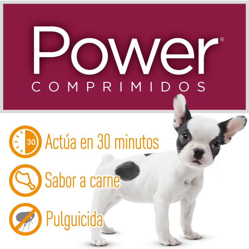 Power Comprimidos