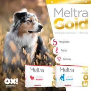 Meltra-Gold