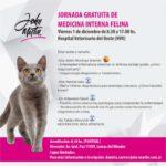 Jornada gratuita de medicina interna felina